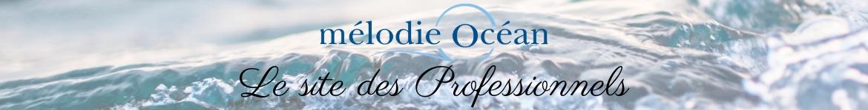 Site mélodie-océan professionnel